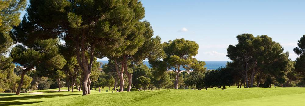 There are 2 fundamental reasons why we advise you to trust PROMEDIA HOMES if you want to buy a property in Spain